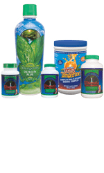Youngevity Healthy Brain and Heart Pack